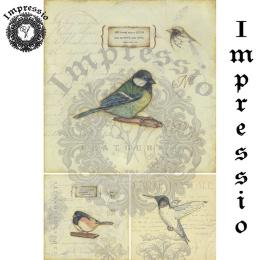 16447. Декупажная карта Impressio, плотность 45 г/м2