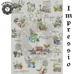 16876. Декупажная карта Impressio, плотность 45 г/м2